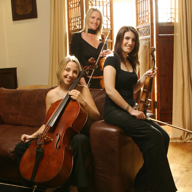 simply strings trio portrait